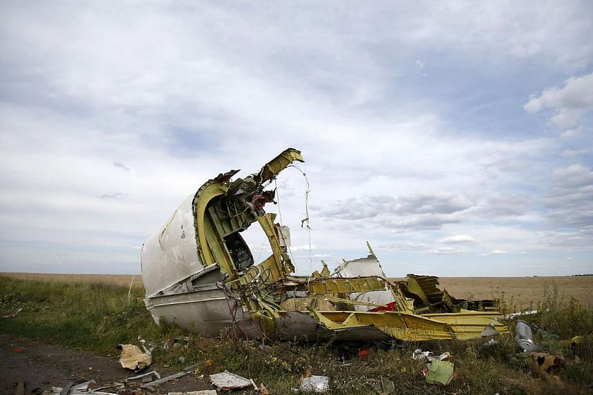A part of the wreckage is seen at the crash site of the Malaysia Airlines Flight MH17 near the village of Hrabove (Grabovo), in the Donetsk region in this July 21, 2014 file photo. -- PHOTO: REUTERS