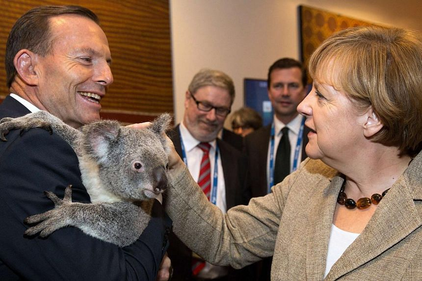 German Chancellor Angela Merkel pats a koala held by Australia's Prime Minister Tony Abbott before the G20 Leaders' Summit in Brisbane in this Nov 15, 2014, handout photo by G20 Australia. -- PHOTO: REUTERS