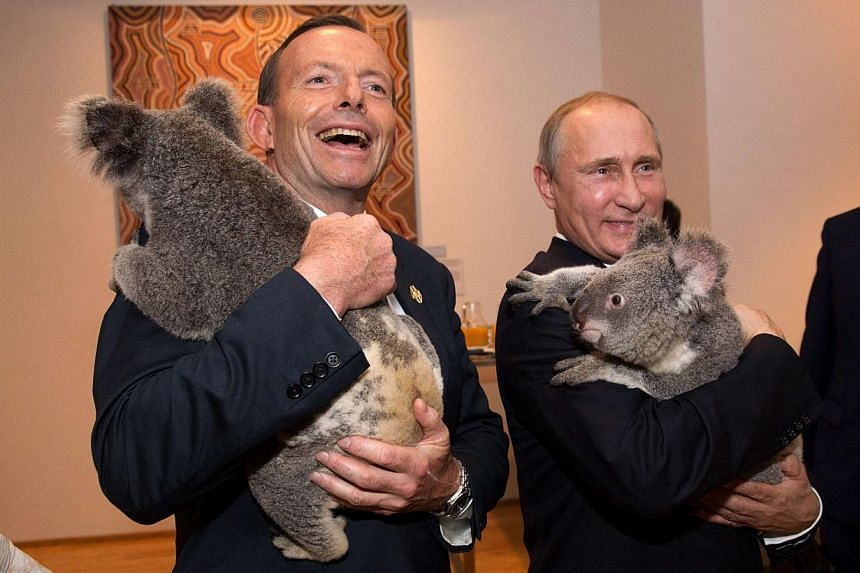 Australia's Prime Minister Tony Abbott (left) and Russia's President Vladimir Putin each hold a koala before the G20 Leaders' Summit in Brisbane in this Nov 15, 2014, handout photo by G20 Australia.-- PHOTO: REUTERS