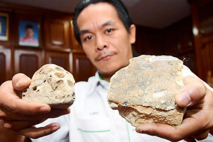 Prime specimen: Geoscience assistant Mohd Azrul Aziz showing the fossils believed to be that of an iguanodon dinosaur species. -- PHOTO: THE STAR/ASIA NEWS NETWORK