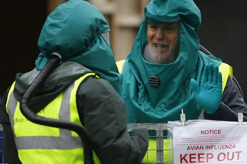 Department For Environment Food and Rural Affairs officials work at a duck farm in Nafferton, northern England, Nov 18, 2014.Britain said on Tuesday that tests had confirmed an outbreak of bird flu on a duck farm in northern England was the H5N