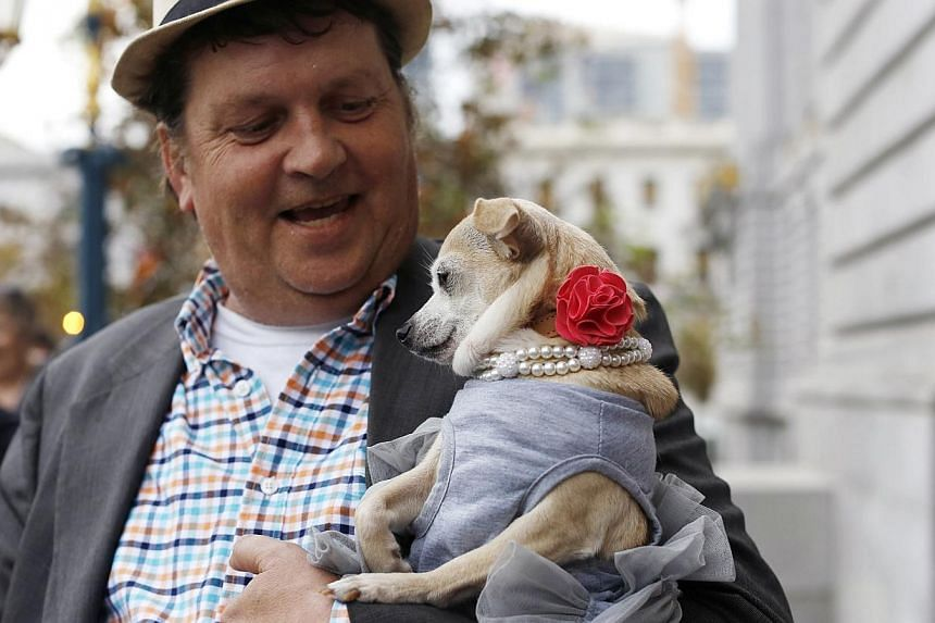 "Dean Clark carries Frida, a female Chihuahua, outside City Hall after the San Francisco Board of Supervisors issued a special commendation naming Frida ""Mayor of San Francisco for a Day"" in San Francisco, California on Nov 18, 2014. -- PHOTO: REUTERS"