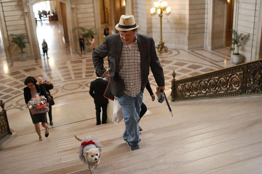 "Frida, a female Chihuahua (left), and owner Dean Clark walk up a flight of stairs in City Hall before the San Francisco Board of Supervisors issues a special commendation naming Frida ""Mayor of San Francisco for a Day"" in San Francisco, California on"