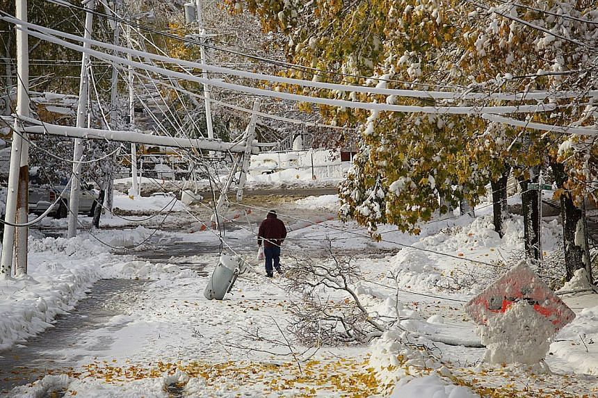 Downed lines on Sanford Street left the road closed and area residents unable to leave their homes after a storm brought several inches of wet snow in Bangor, Maine on Nov 3, 2014. -- PHOTO: REUTERS