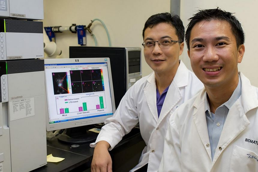 Associate Professors Zhang Qichun (left) and Joachim Loo from Nanyang Technological University (NTU) have invented a new way of detecting tumour cells, and administering anti-cancer drugs to those specific cells. -- PHOTO: NANYANG TECHNOLOGICAL UNIVE