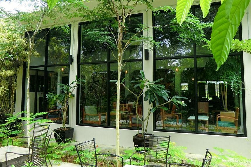 Cafes in Changi include The Coastal Settlement (left) in leafy Netheravon Road and Peloton Coffee & Juice Bar (above) in Changi Village Road.