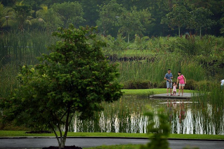Go animal-spotting at the wetlands (right) in Sengkang Riverside Park, which serve as a natural habitat for turtles, small fishes, birds (above) and insects.