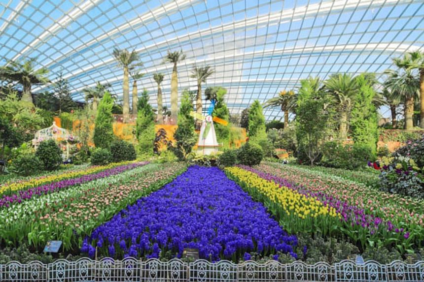 Gardens by the Bay aims to be a conservation model that inspires pride of community ownership in every Singaporean. PHOTO: GARDENS BY THE BAY