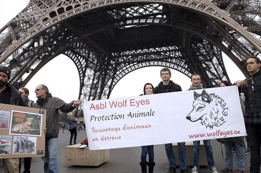 French animal rights activists call for the protection of wolves near the Eiffel Tower in Paris on the sidelines of a protest by farmers demanding an effective plan by the ecology ministry to fight against wolves following an increasing number of att