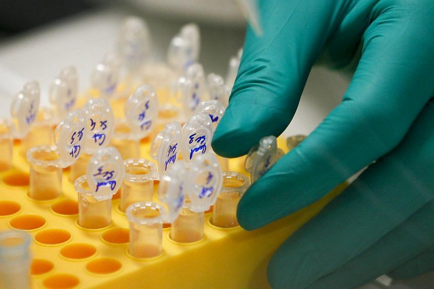 DNA being prepared in a laboratory at the Bioaster Technology Research Institute in Lyon, France. DNA molecules attached to the outside of a rocket may be able survive a return trip to suborbital space. -- PHOTO: REUTERS