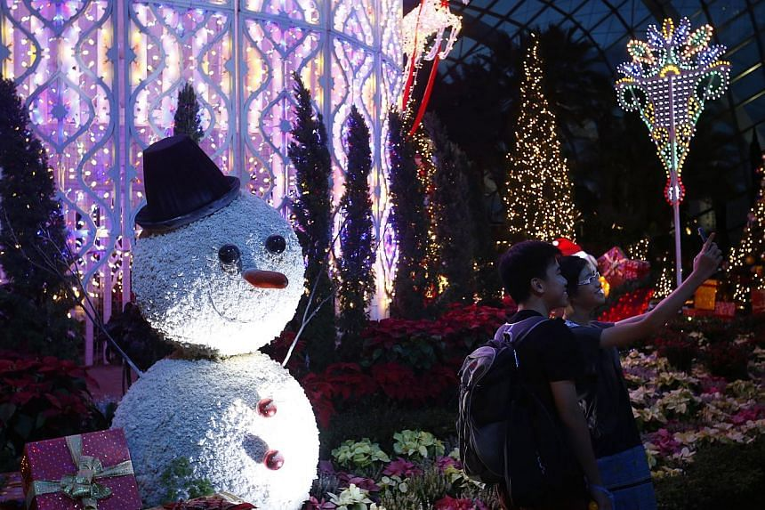 Visitors take pictures with Christmas decorations in the Flower Dome during the official launch of Christmas Wonderland at Gardens by the Bay on Nov 28, 2014. -- ST PHOTO: KEVIN LIM