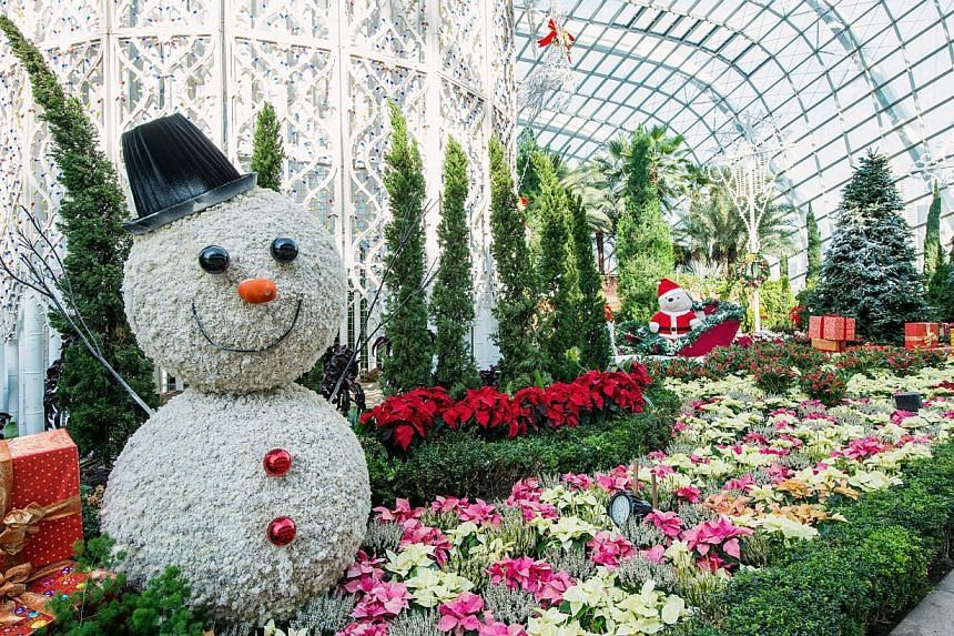 Yuletide in the Flower Dome by day.-- PHOTO: CHRISTMAS WONDERLAND @ GARDENS BY THE BAY