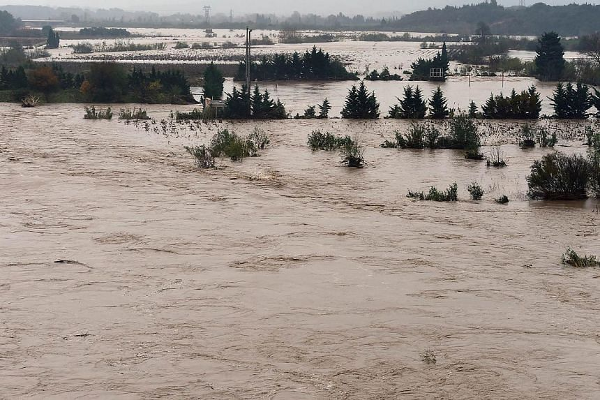 Vineyards are flooded by the swollen river La Berre near the city of Portel-des-Corbieres, southern France, following heavy rains on Nov 30, 2014. -- PHOTO: AFP
