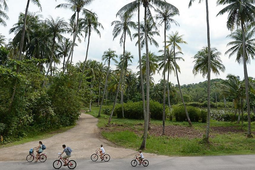 Cyclists touring Pulau Ubin on Ubin Day. -- ST PHOTO: NG SOR LUAN