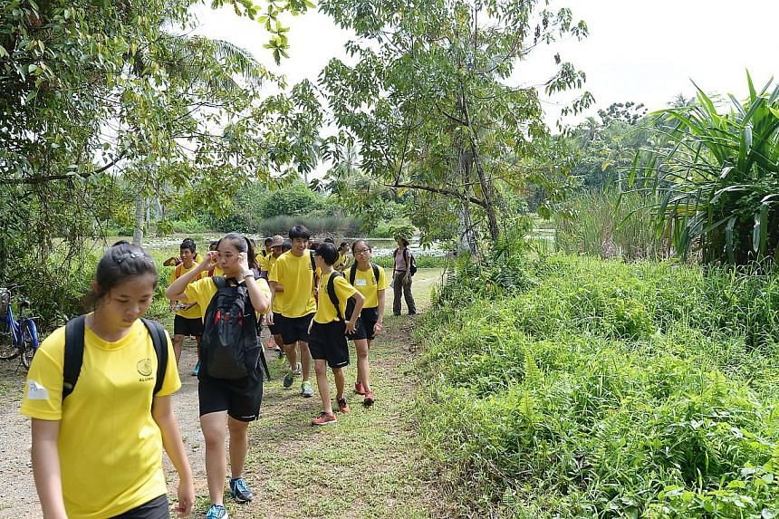 Students leaving the sensory trails ponds in Pulau Ubin on Ubin Day. -- ST PHOTO: NG SOR LUAN