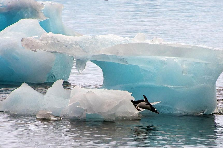 The melt rate of glaciers in the fastest-melting part of Antarctica has tripled over the past decade, researchers said on Tuesday in an analysis of the past 21 years. -- PHOTO: AFP