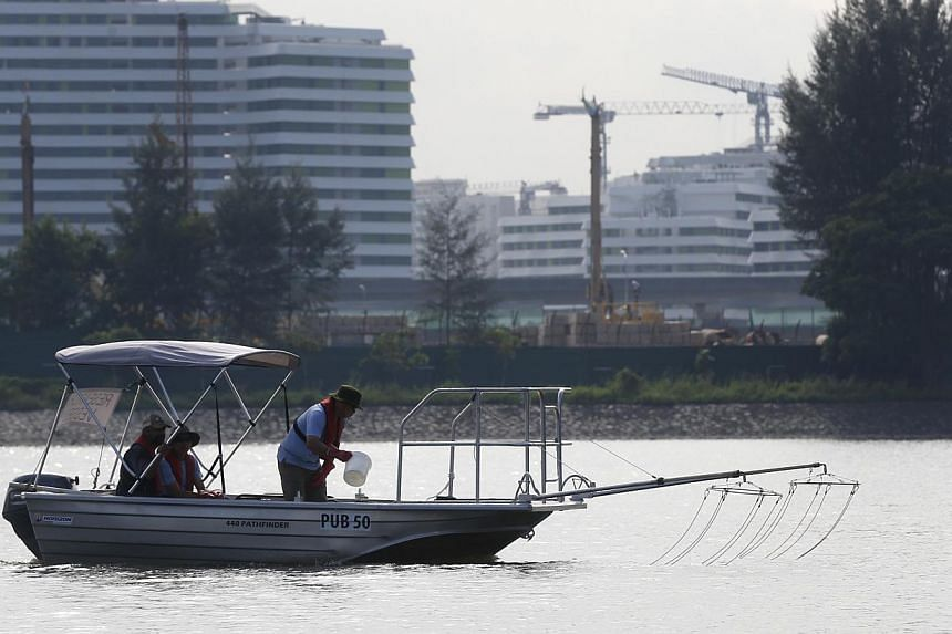NUS researchers using an electro fishing boat in the Punggol Reservoir on Dec 3, 2014. -- PHOTO: KEVIN LIM