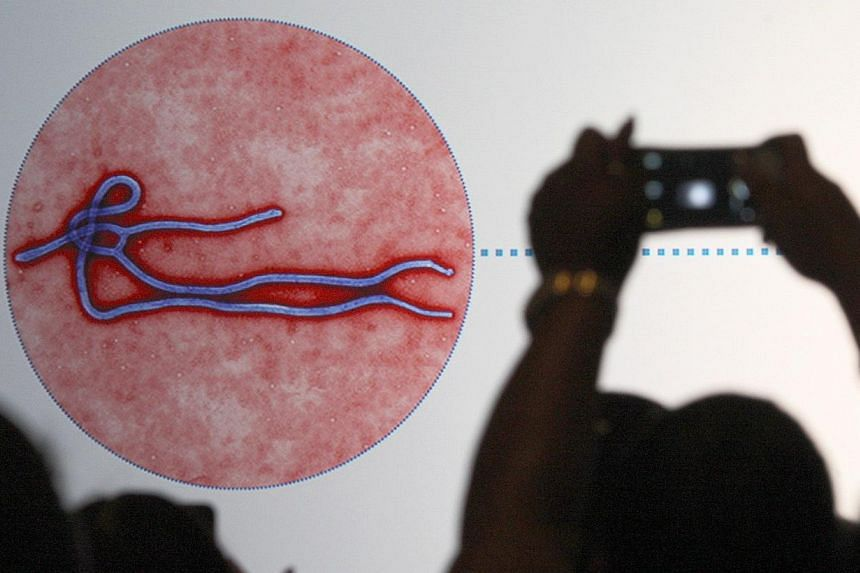 An audience member photographs a slide showing the likeness of an Ebola virus during an Ebola safety presentation by the US Centers for Disease Control and Prevention on Nov 7, 2014, in Los Angeles, California. -- PHOTO: AFP
