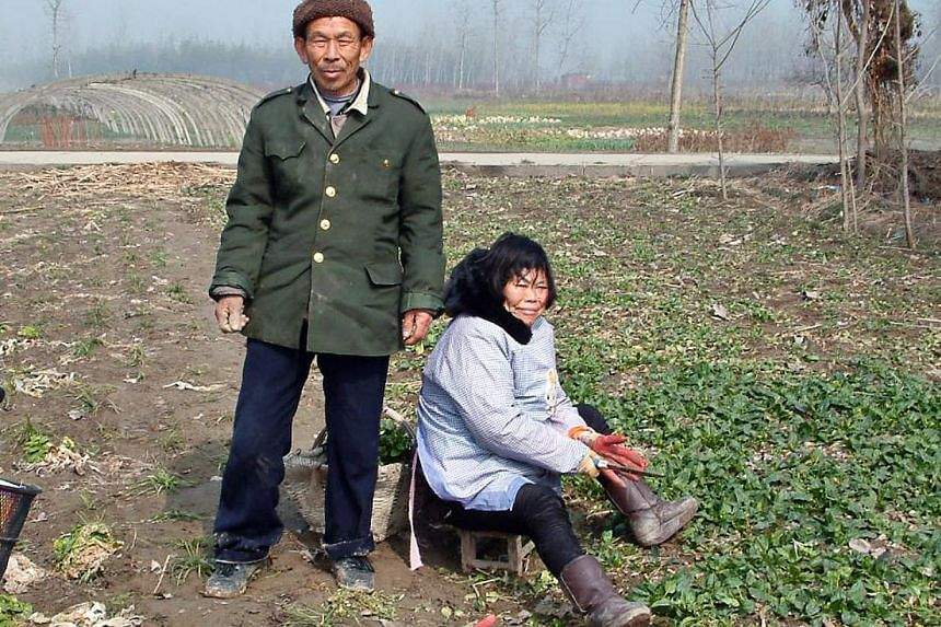 The idyllic village life experienced by China's rural dwellers (above) has been brought to ruins by the breakdown of traditional social norms that followed decades of failed policies and neglect by the state. Crime is soaring, families are falling ap