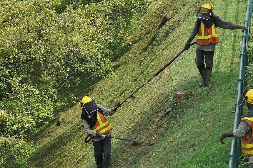 The newly-established Municipal Services Office (MSO) is looking at coordinating grass-cutting services across different public spaces, said Minister in the Prime Minister Office Grace Fu on Wednesday. -- PHOTO: ST FILE
