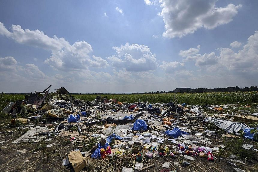 A photo taken on July 23, 2014 shows the crash site of the downed Malaysia Airlines flight MH17, in a field near the village of Grabove, in the Donetsk region.Dutch authorities have identified two more victims of the MH17 crash, with just four