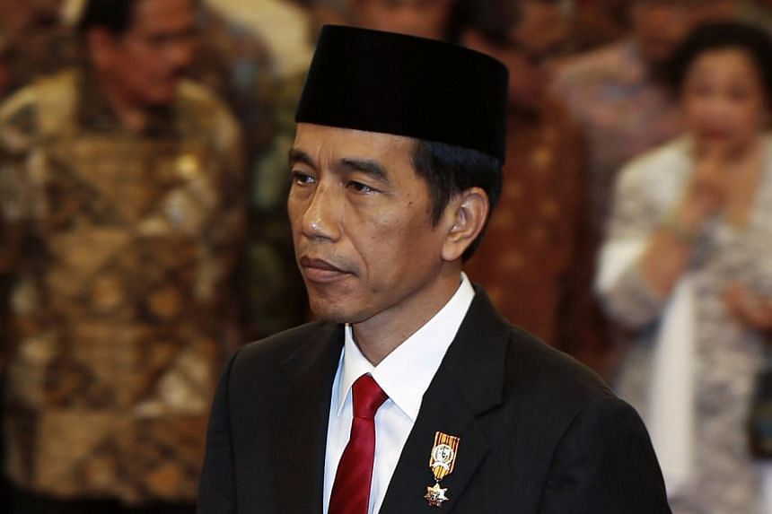 President Joko wants Indonesia to be a maritime power but the vision is still sketchy.