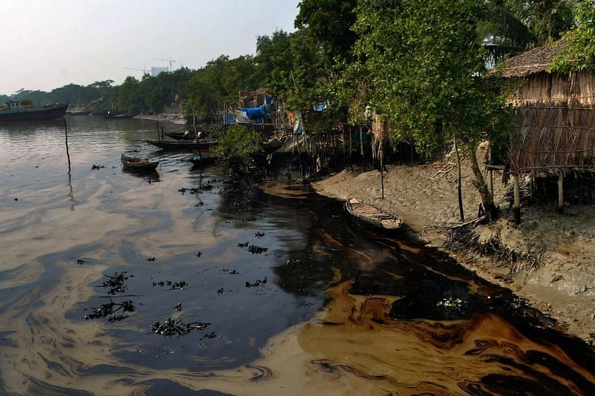 An oil spill from a Bangladeshi oil-tanker is seen on the Shela River in Mongla on Dec 12, 2014.A dead dolphin has been found in Bangladesh's protected Sundarbans delta following an oil spill which has spread over several hundred square kilomet
