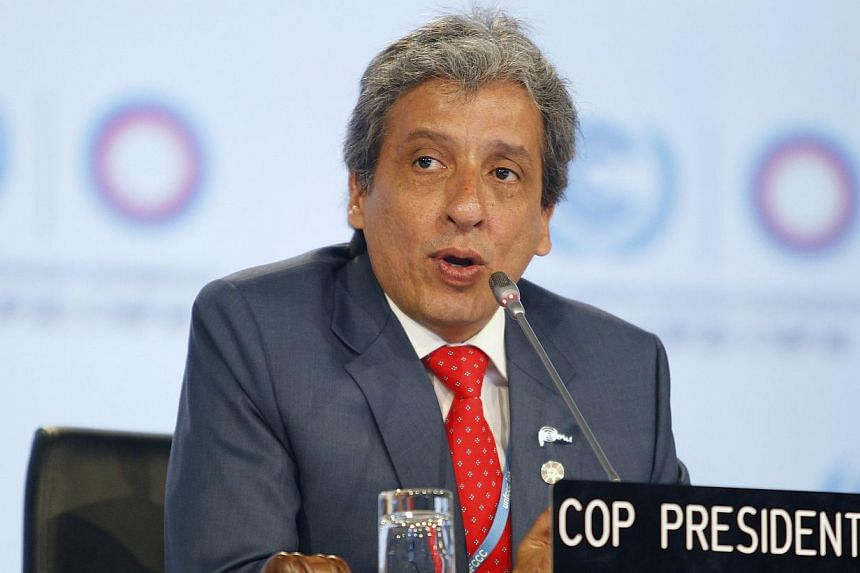 COP 20 President and Peru's Environment Minister Manuel Pulgar-Vidal makes an announcement during a plenary session of the UN Climate Change Conference COP 20 in Lima on Dec 12, 2014.UN members on Sunday adopted a format for national pledges to