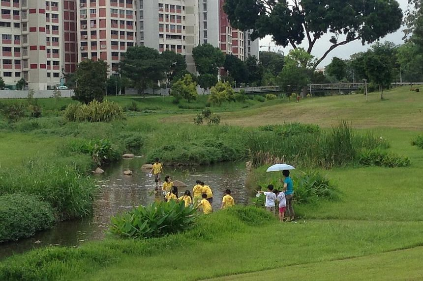 Park goers did not seem to notice anything wrong with the water.-- ST PHOTO: YEO SAM JO