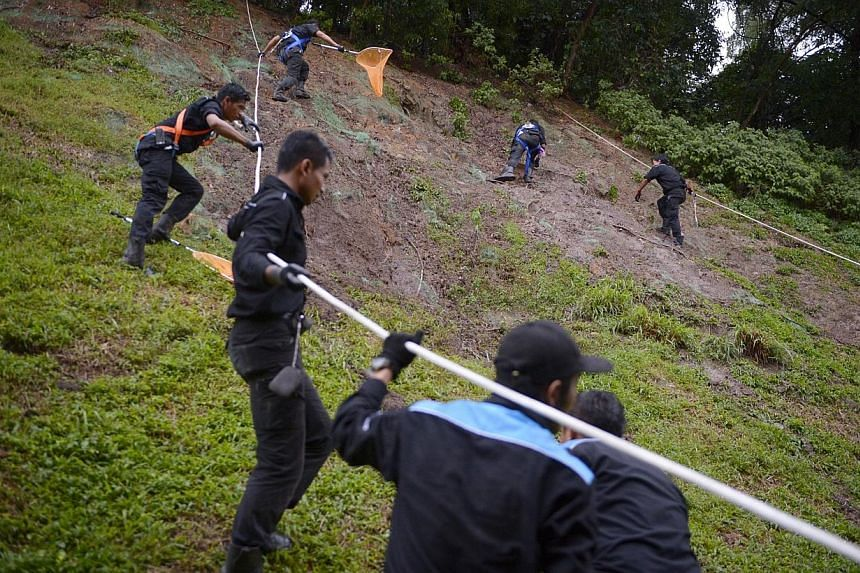 Pest controllers from Star Pest Control deployed to get rid of rats at slope near Bukit Batok MRT station on Dec 18, 2014. -- ST PHOTO: MARK CHEONG
