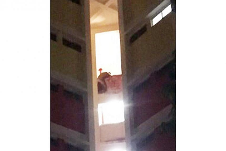 The alleged killer stabbed himself on the ninth-floor ledge and threatened to jump. Bleeding profusely, he eventually climbed back to safety and was arrested. -- PHOTO: SHIN MIN DAILY NEWS