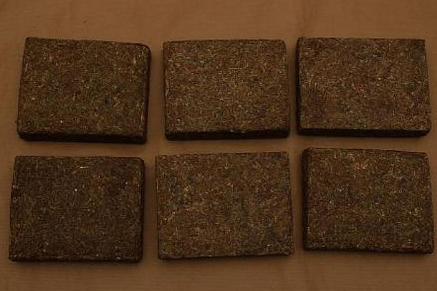 Cannabis seized at Woodlands Checkpoint. -- PHOTO:ICA/CNB