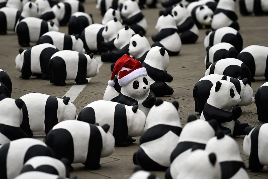Some of the 1,600 papier-mache pandas are displayed at Independence Square in Kuala Lumpur on Dec 21, 2014, as part of their first appearance in the city. -- PHOTO: AFP