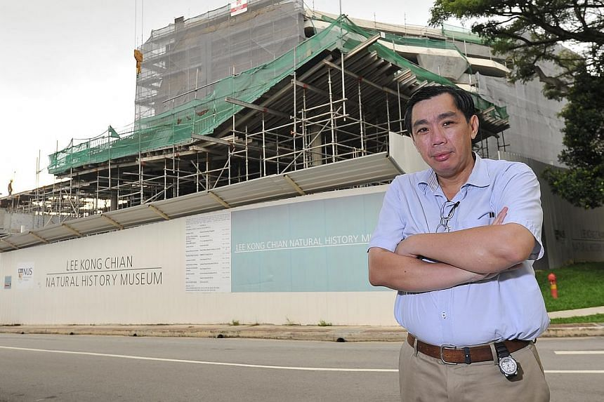 The writer at the site of the Lee Kong Chian Natural History Museum in April. He says the museum is not a mere sarcophagus of decaying carcasses. It is also a place that holds a huge body of knowledge, with great potentialities.