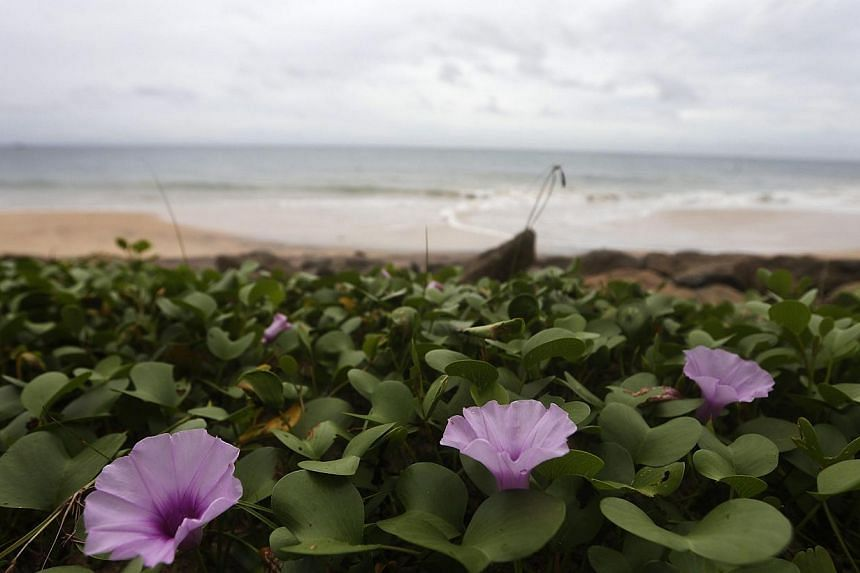 Flowers are seen on the beach in Seenigama on Dec 20, 2014. More than 250,000 people died in the tsunami on Dec 26, 2004, which was triggered by a 9.0-magnitude earthquake off the coast of Indonesia's Sumatra island. -- PHOTO: REUTERS