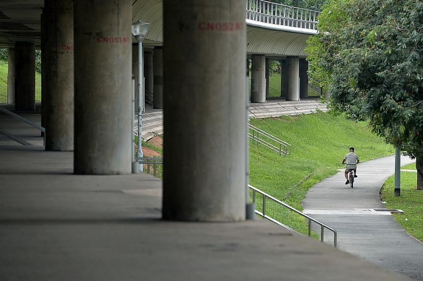 The path under the MRT track on the north-south line near block 420, Ang Mo Kio Avenue 10, the section between Bishan and Ang Mo Kio MRT stations. -- ST PHOTO: KUA CHEE SIONG