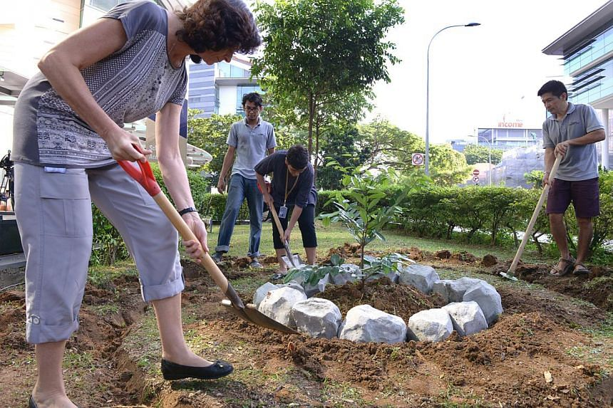 On Jan 6, 2015, SMU launched GROW, an environmental initiative that promotes green and sustainable efforts both inside and outside of the classroom.-- ST PHOTO:DANIEL NEO
