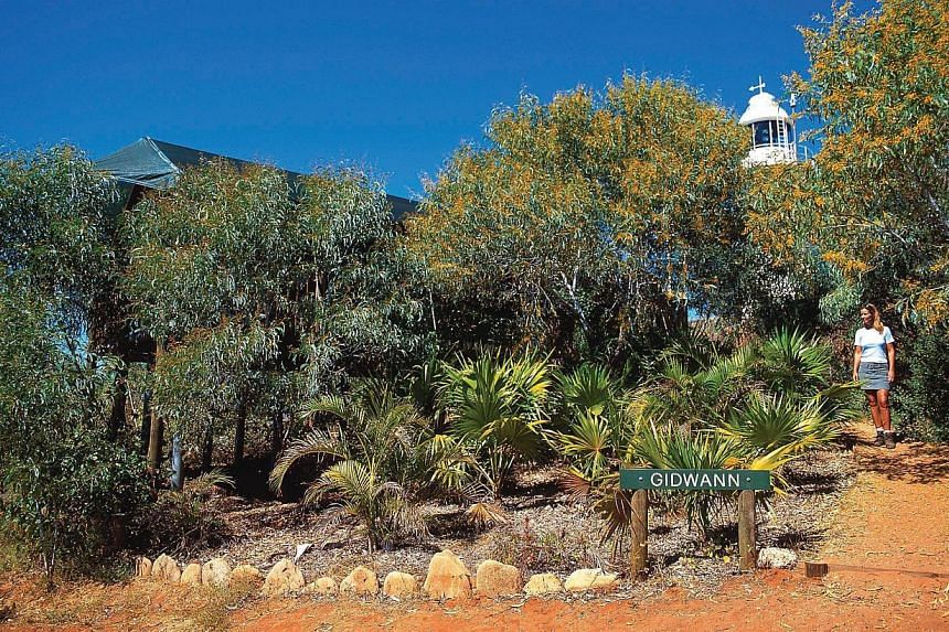 Lighthouse seekers in Western Australia can visit The Lighthouse Keeper's Cottage Museum at Carnarvon,trek to Cape Naturaliste Lighthouse near Dunsborough, relax at Kooljaman Resort and lighthouse (above)at Cape Leveque or take a day tr