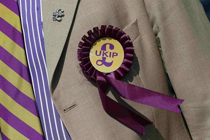 A supporter is seen wearing a United Kingdom Independence Party (UKIP) badge before meeting the leader of the party Nigel Farage, at a campaign event in South Ockendon, Essex in this May 23, 2014 file photo. -- PHOTO: REUTERS
