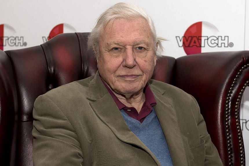 British broadcaster and naturalist Sir David Attenborough poses for photographs at a preview screening for his latest nature documentary series called Natural Curiosities at London Zoo, in London, Britain on Monday. -- PHOTO: EPA