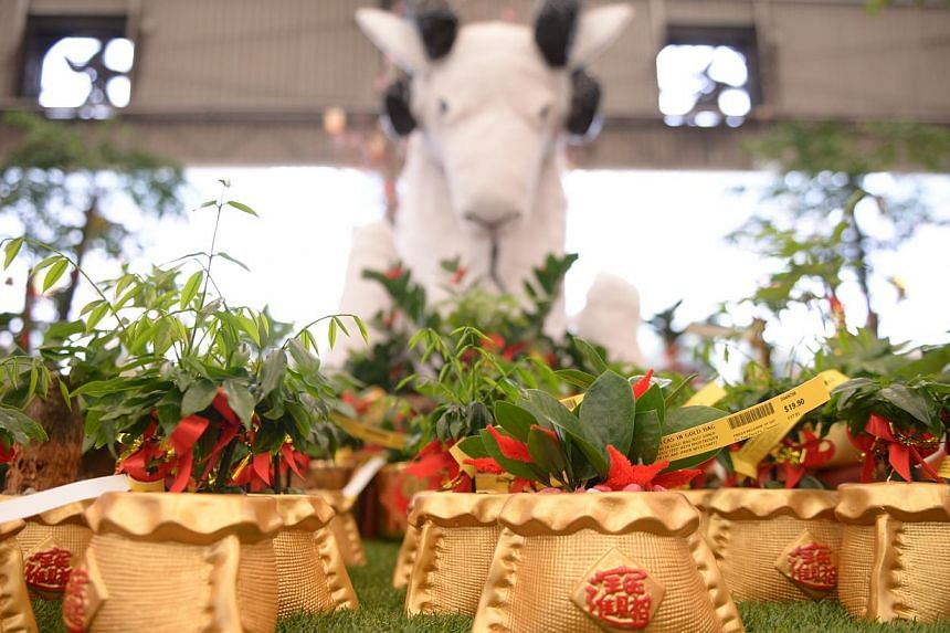 Add festive cheer to your home with a floral centrepiece (above). Usher in the Year of the Goat with plants in gold pots (above) or a mandarin orange plant shaped like a topiary (left).
