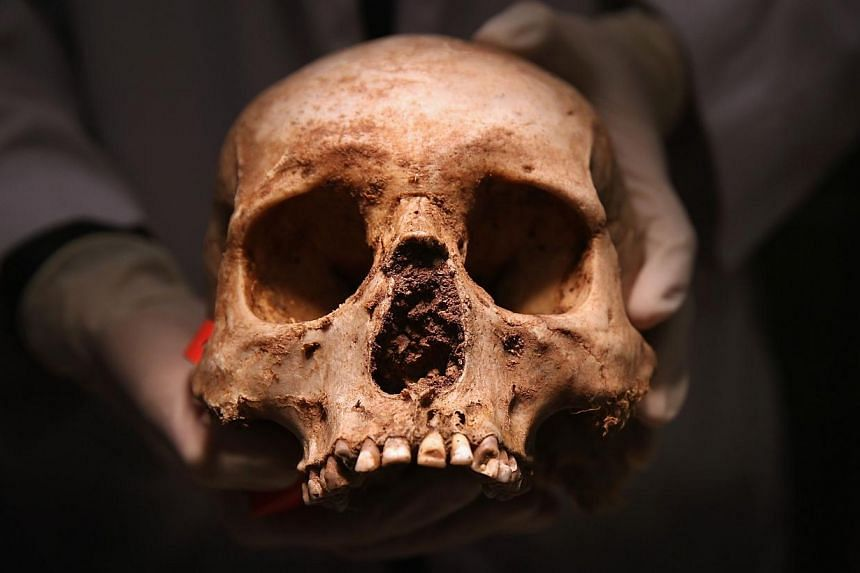 A human skull being held up by a forensic anthropologist. Thegruesome discovery of dozens of bones and decayed body parts found in a police building in northern India has sparked a probe by authorities.-- PHOTO: AFP