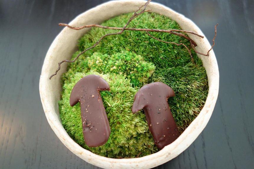 Course 17: Wild cinnamon and fermented mushrooms.-- ST PHOTO: TAN HSUEH YUN