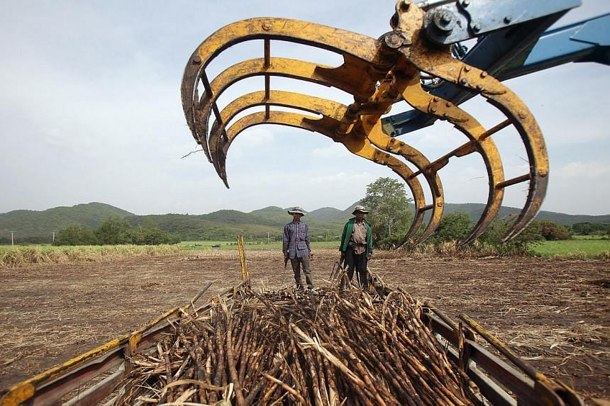 Thailand will experience its worst drought in more than a decade this year, the irrigation department said on Thursday, damaging crops in one of the world's biggest rice-exporting nations. -- PHOTO: BLOOMBERG