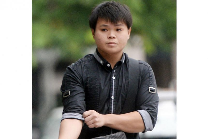 Goh Rong Liang, 18, a cashier, admitted to four of five charges - one of spraying graffiti on the walls atop Block 85A Lorong 4 Toa Payoh, stealing four cans of spray paint and two of trespassing at the HDB rooftop and Marina Bay Suites last year. --
