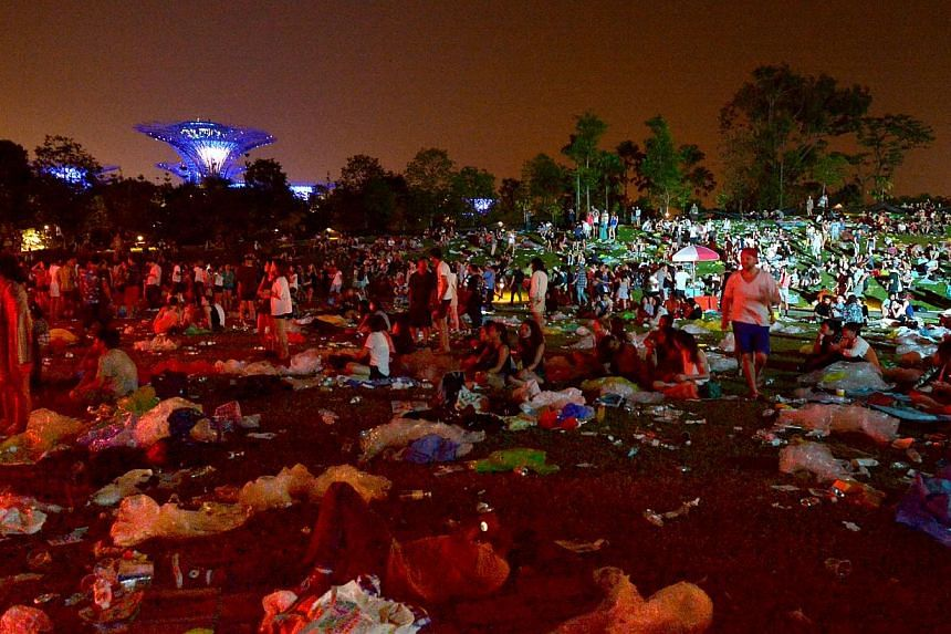 Rubbish left behind after Laneway music festival at Gardens by the Bay. There is growing evidence that the littering problem has become noticeably worse, and it isn't because it's someone else's fault. -- ST PHOTO: ALPHONSUS CHERN