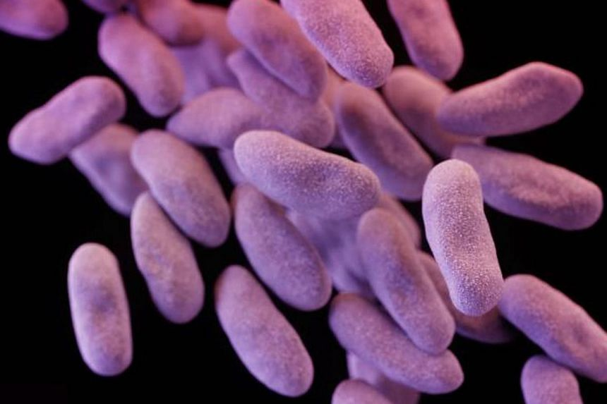 The Ronald Reagan UCLA Health System released a statement late on Wednesday saying at least seven of its patients have been infected with carbapenem-resistant Enterobacteriaceae (above), apparently transmitted to them in the hospital via tainted surg