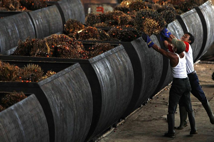 Workers loading palm oil fruits into containers at a factory in Malingping, Indonesia, in 2010. Indonesia will crack down on corporate tax avoidance via transfer pricing this year to try and recoup 200 trillion rupiah (S$21 billion) in lost state inc