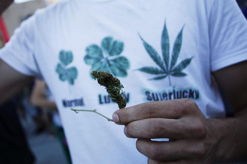 Jamaica, long associated with a vibrant pot-smoking culture, on Tuesday passed a law decriminalising possession of small amounts of the leaf it calls ganja. -- PHOTO: REUTERS