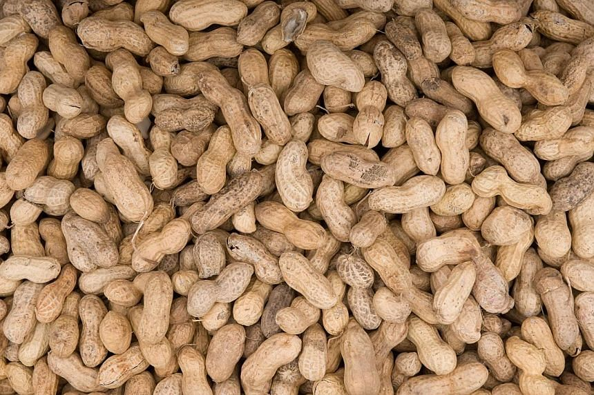Peanuts are offered for sale at Eastern Market on Capitol Hill in Washington, DC. With peanut allergies on the rise worldwide, a study found that contrary to previous advice, feeding foods containing peanuts to babies before 11 months of age may help